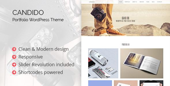 Candido - Portfolio WordPress Theme WordPress Kit Oral