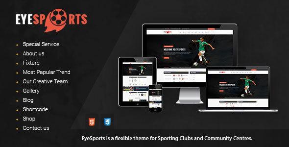 Eye Sports - Fixtures and Sports WordPress Theme Mitchell Katsuro