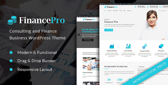 FinancePro - Consulting and Finance Business WordPress Theme Beaumont Randell