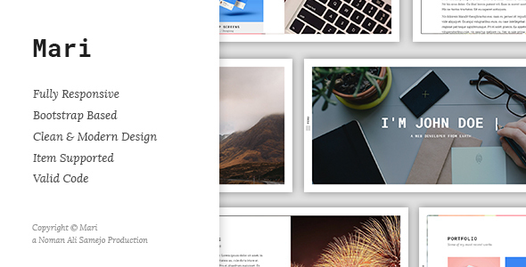 Mari - Responsive Resume / CV / vCard WordPress Theme Ryoichi Perry