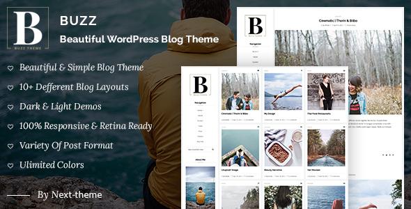 Buzz - Responsive WordPress Blog Theme WordPress Seward Garrett