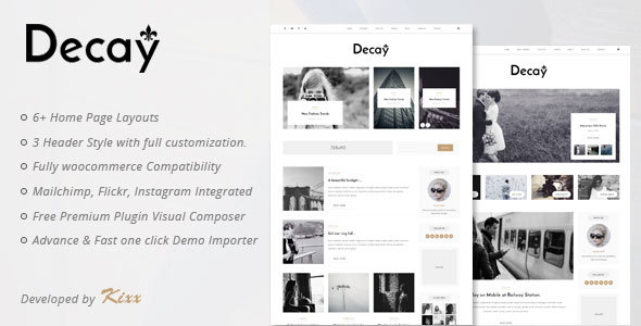 Decay - A Responsive Personal Blog & Woocommerce WordPress Theme Wynne Tim
