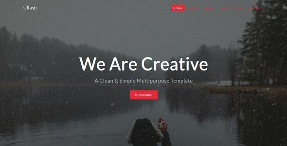 Ullash-One Page Multipurpose Template            TFx Johnnie Thom