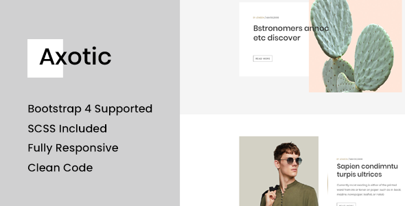 Axotic - Responsive Blog Site Template            TFx Hale Xzavier