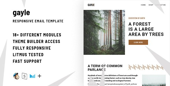 Gayle– Responsive Email + StampReady Builder            TFx Gyles Hamlet
