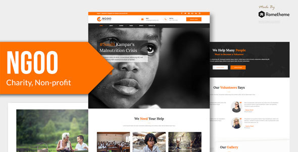 NGOO - Charity, Non-profit, and Fundraising HTML Template        TFx Lemoine Pip