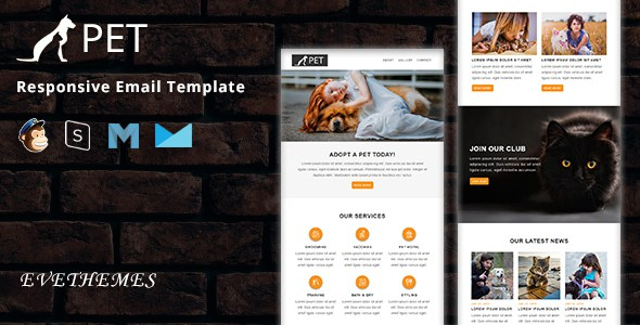 PET - Responsive Email Template        TFx Isiah Leith