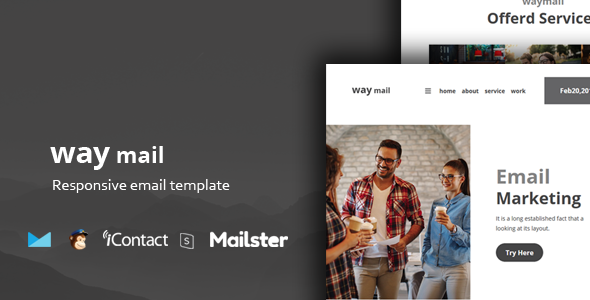 Way Mail - 30+ Modules + Online Access + Mailster + MailChimp        TFx Lacy Made