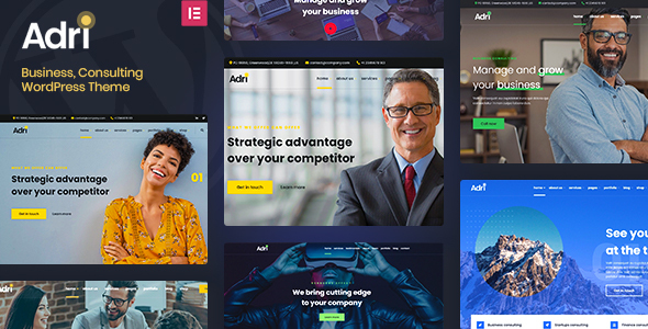 Adri - Business and Consulting WordPress Theme TFx ThemeFre