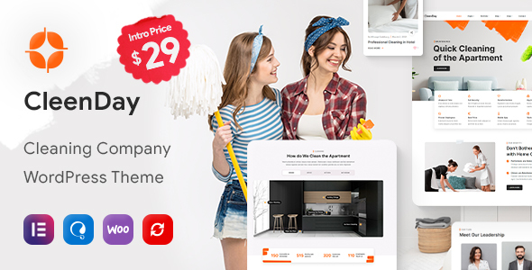 CleenDay - Cleaning Company WordPress Theme TFx ThemeFre
