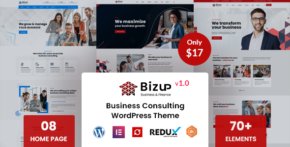 Bizup - Business Consulting WordPress Theme TFx ThemeFre